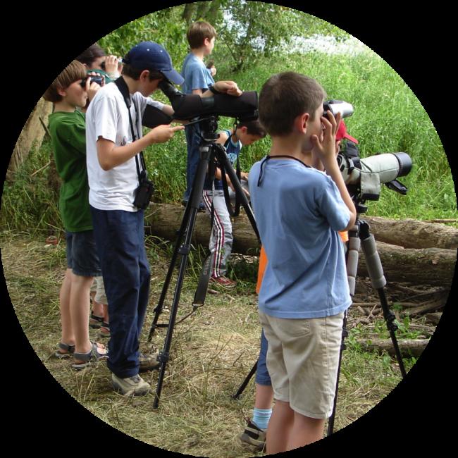 Loiret Nature Environnement (LNE) est une association d'étude, de sensibilisation et de protection de la nature et de l'environnement.